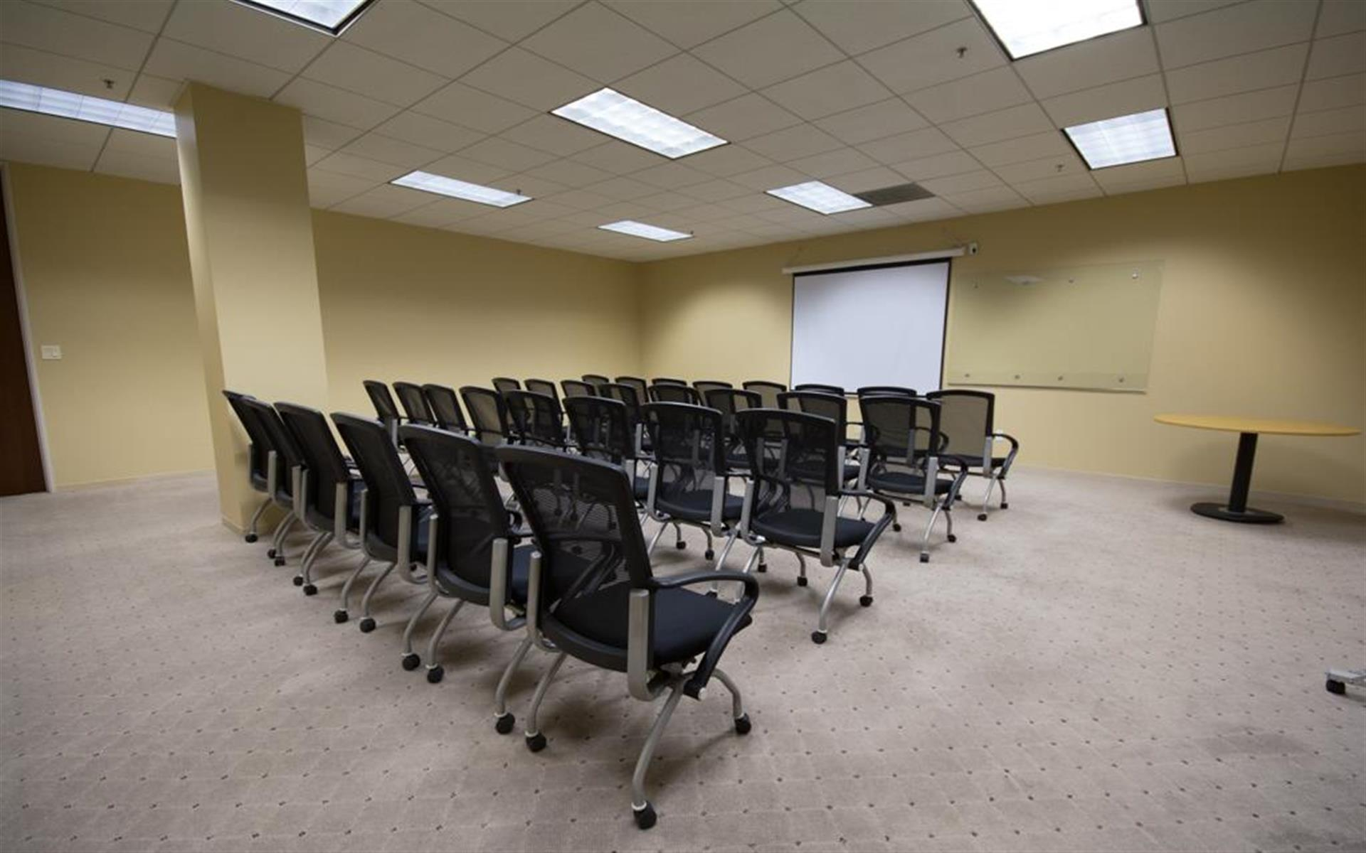 Newpark Professional Center - Seminar room