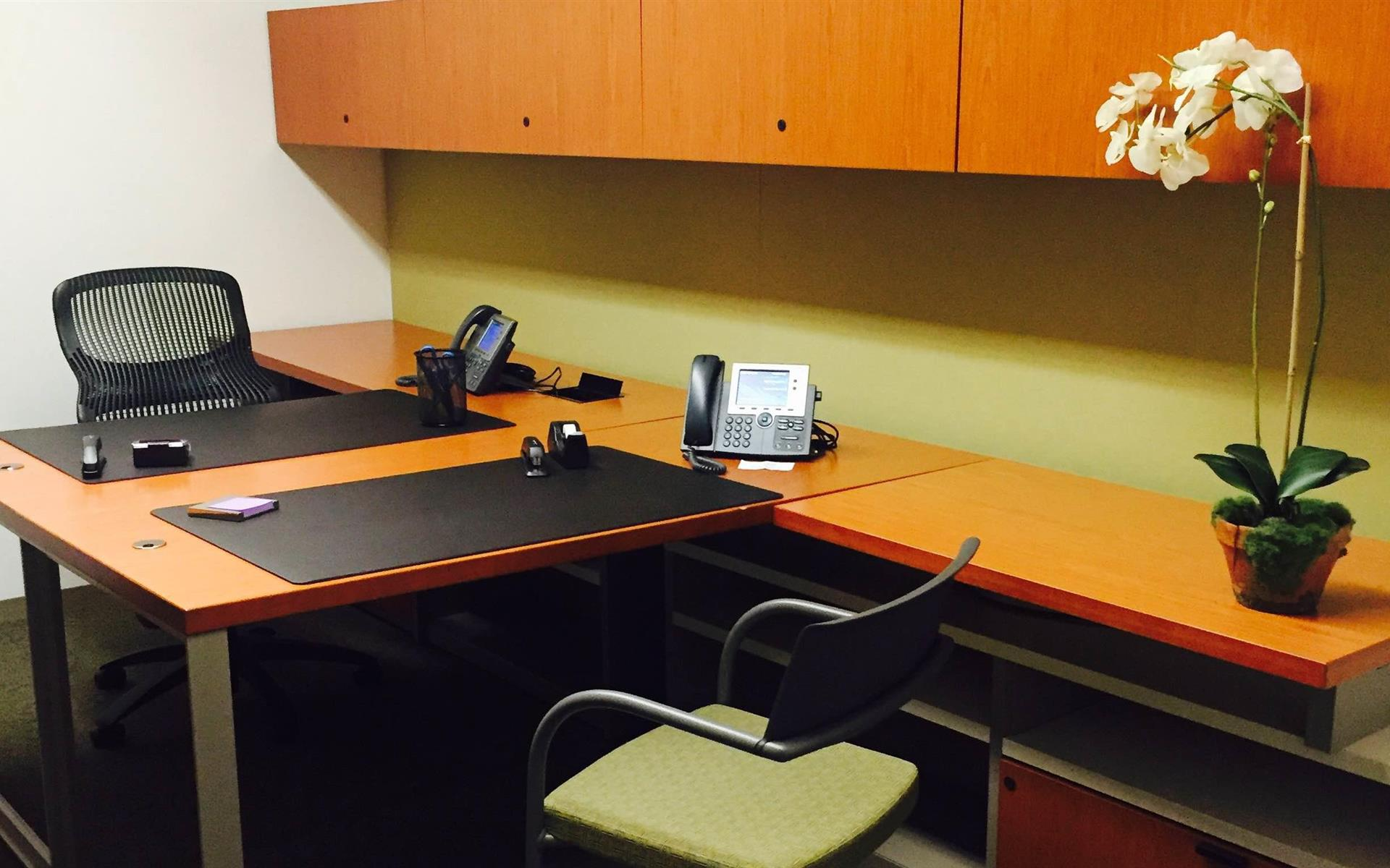 Carr Workplaces - Tysons Boulevard - Galleria Day Office