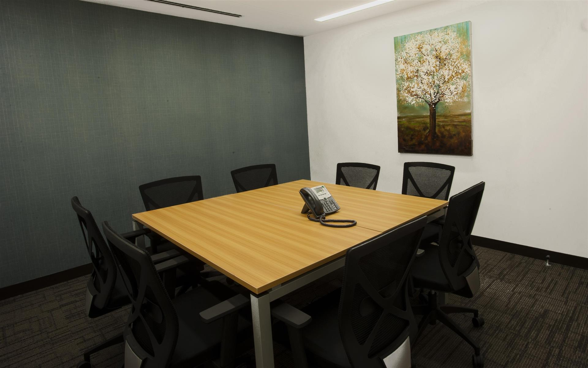 Synergy Workspaces - Conference Room A