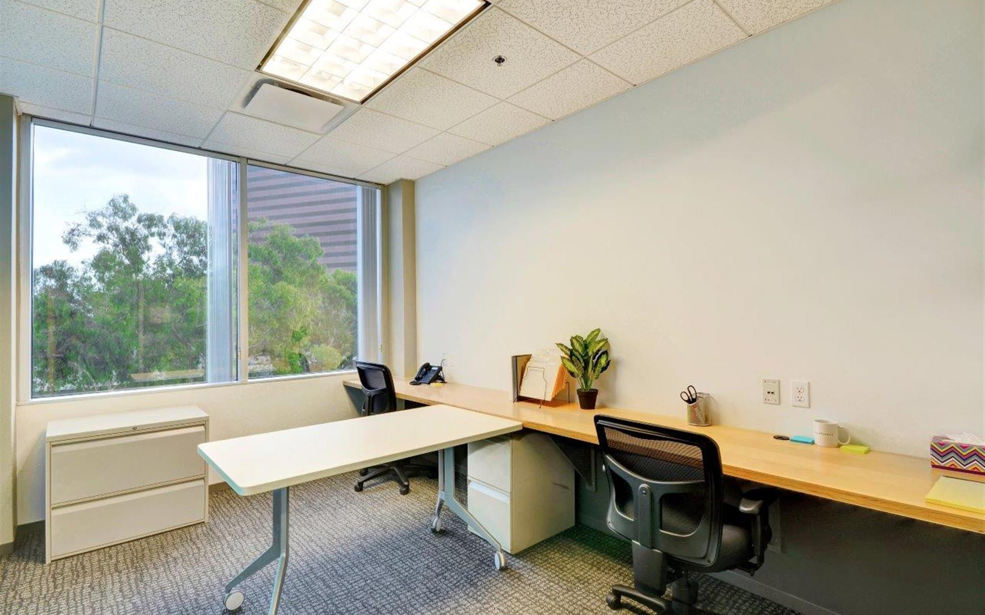 TechSpace- Costa Mesa - Private office W/View