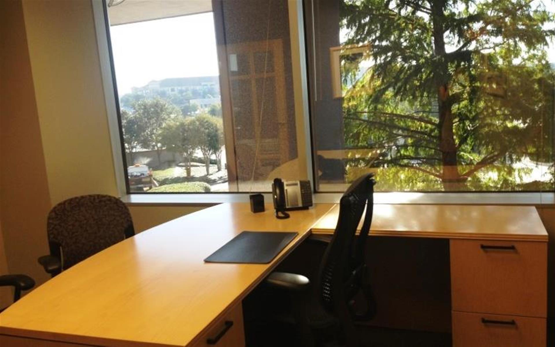 Intelligent Office Dallas (Las Colinas) - Executive Office 2