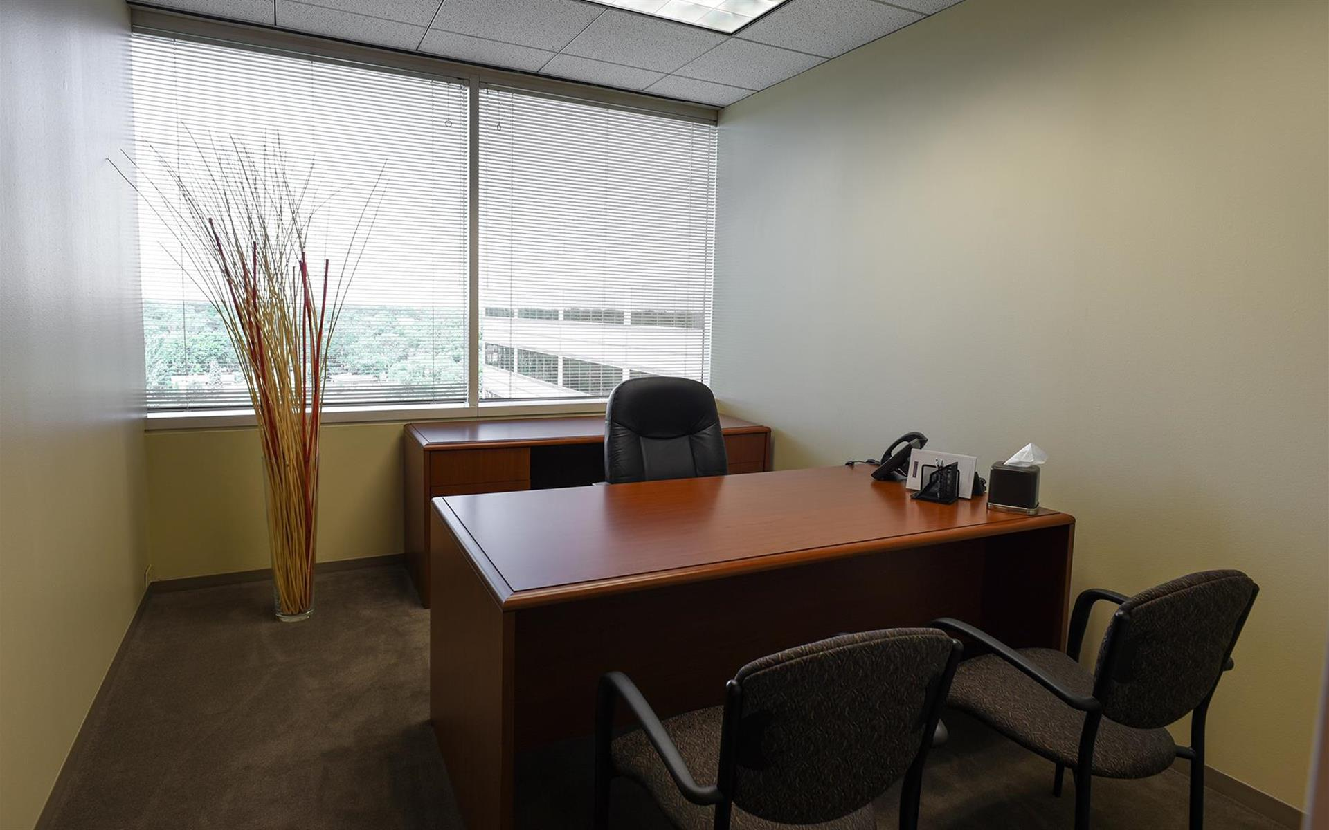 My Office Suite - Oakbrook - Day Office 804 (window)