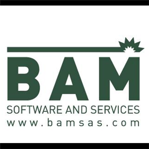 Logo of BAM Software & Services
