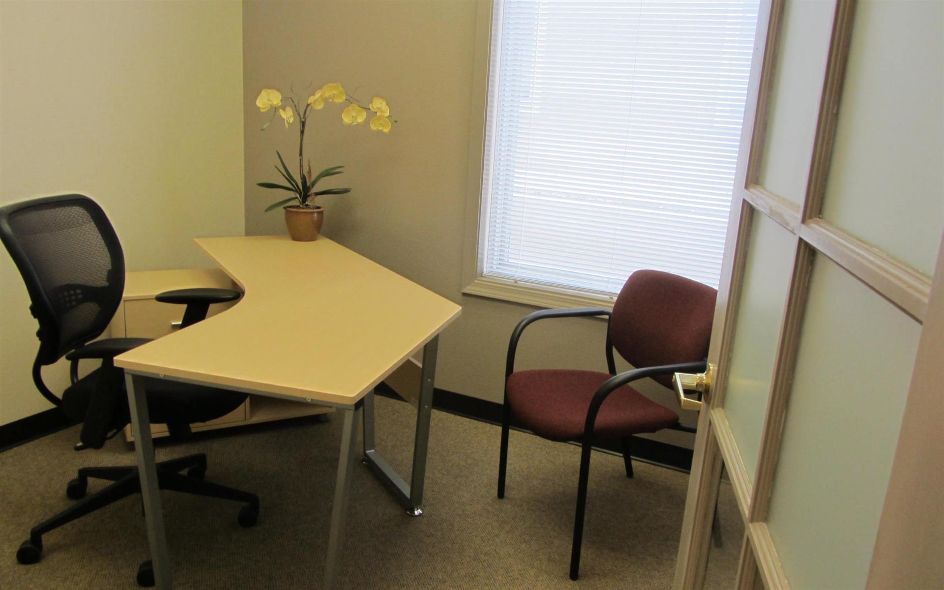 Office Alternatives Westside - Coaching Room