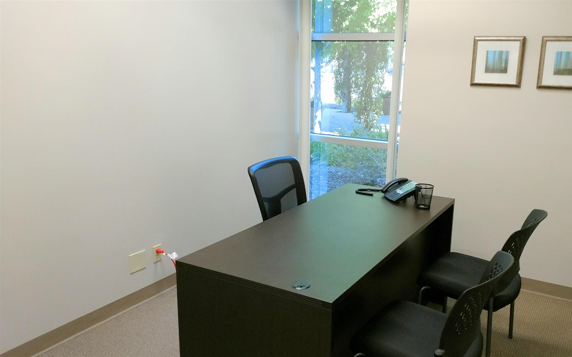 Focus Strategies - Suite 120 - private office 4 with view