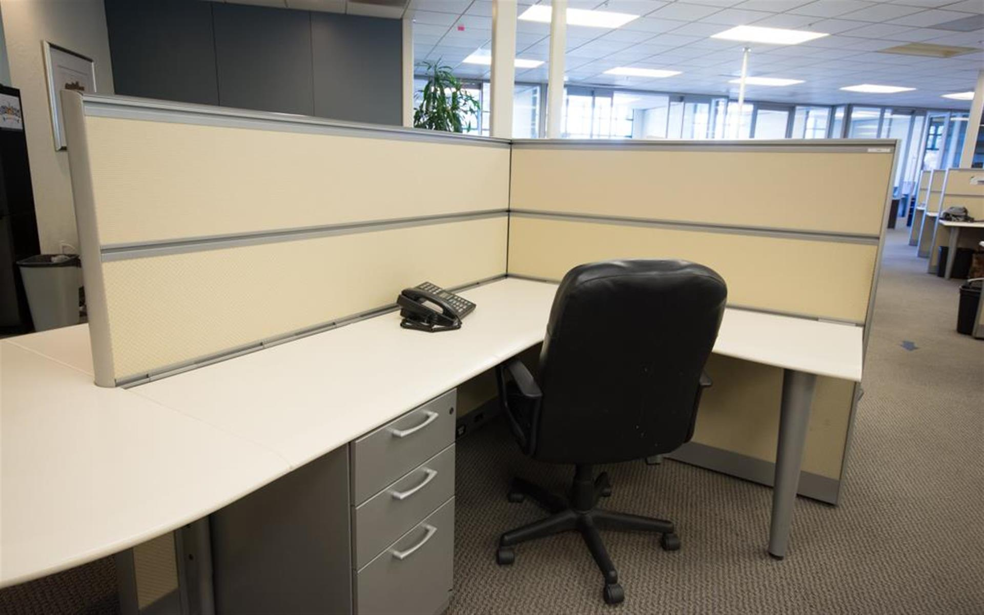 Silicon Valley Business Center - Dedicated Desk