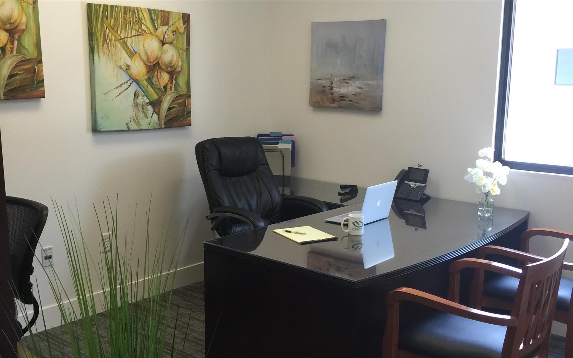 Endeavor Innovative Workspaces - Private Office