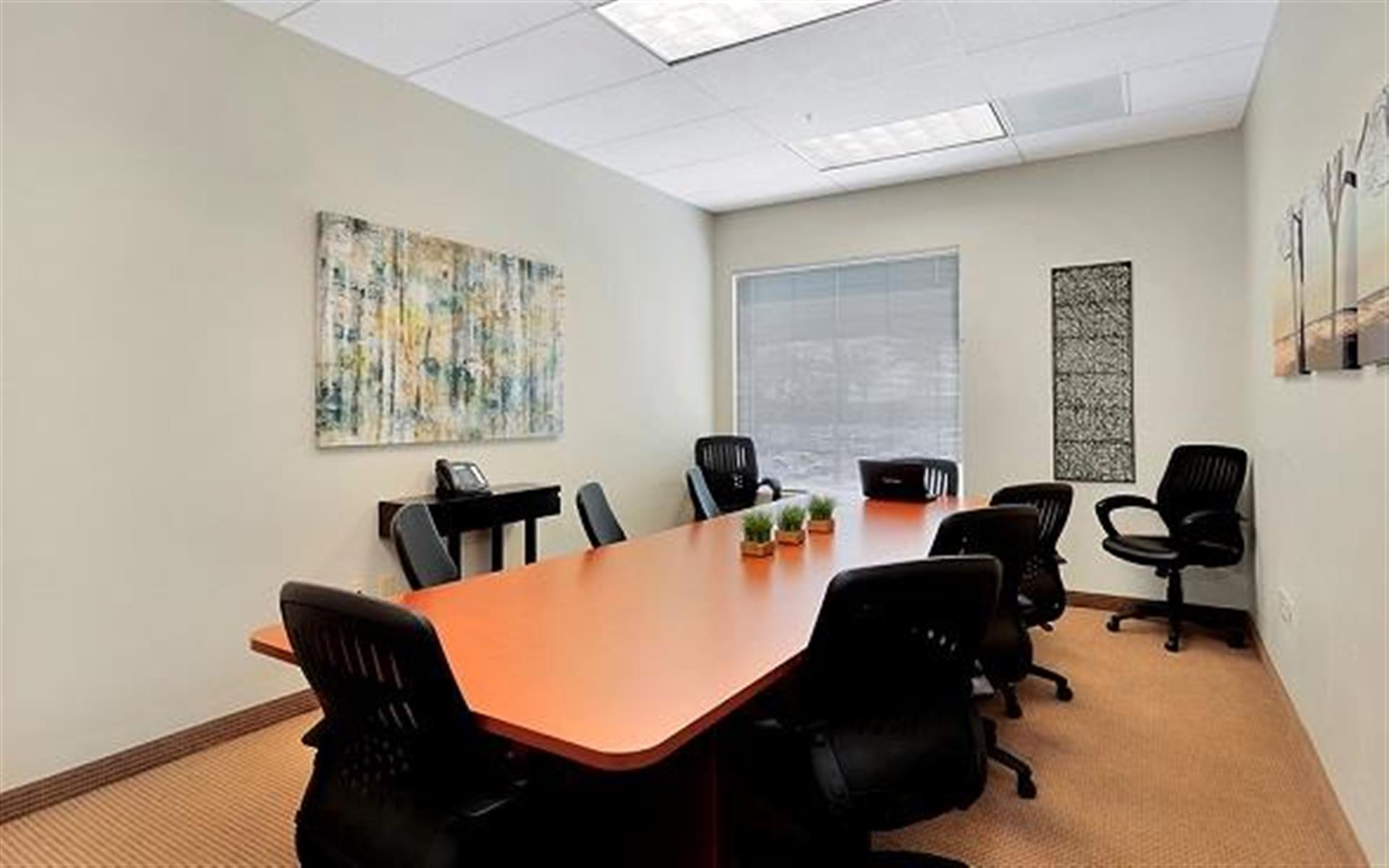 Premier Executive Center - Large Conference Room