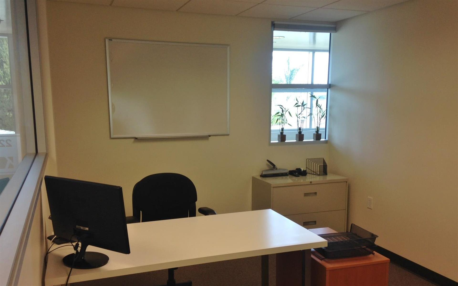 Light Modern Work Space - Private Office with two Desks