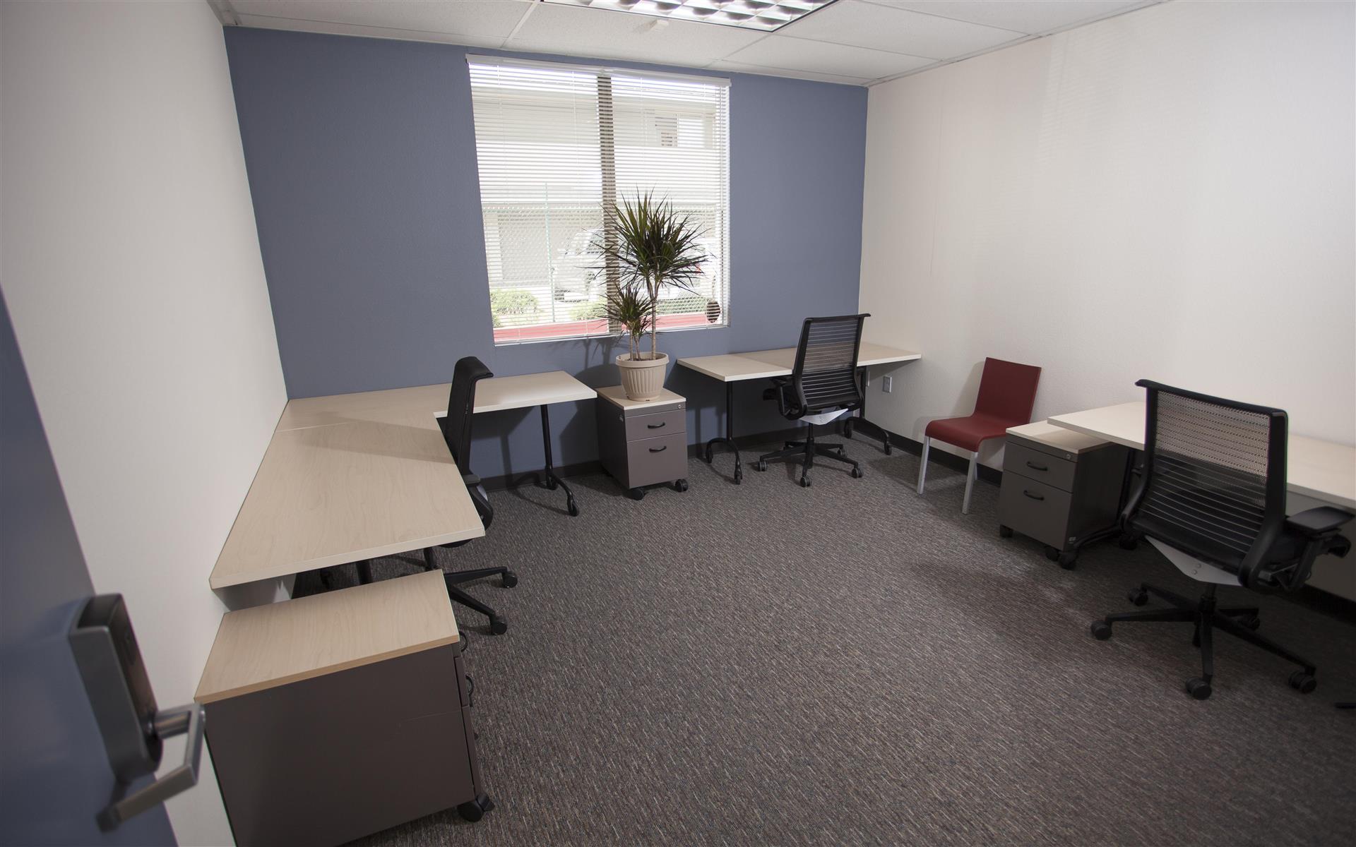 Satellite Center Santa Cruz - Large Private Office