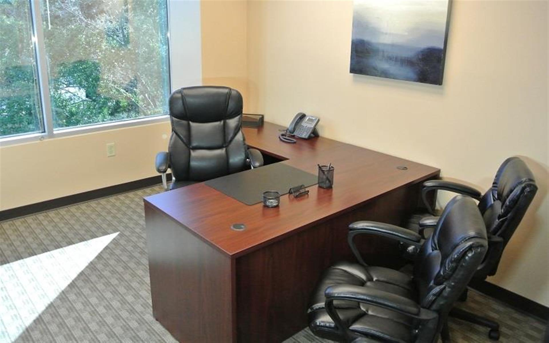 Orlando Office Center at Sand Lake Road - Office 303 - One desk Office with Window