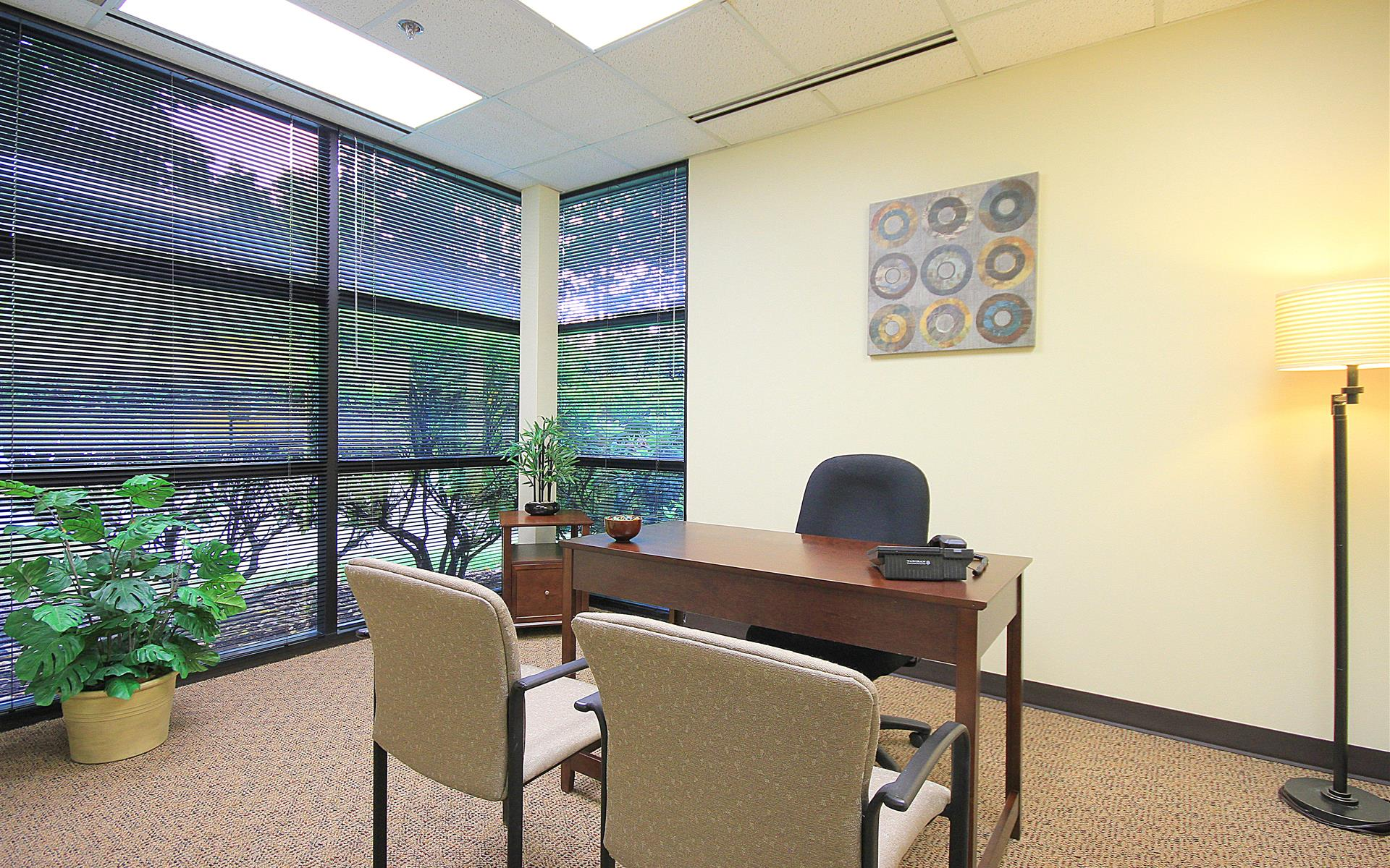 (BOT) Northcreek Executive Offices - Window Office