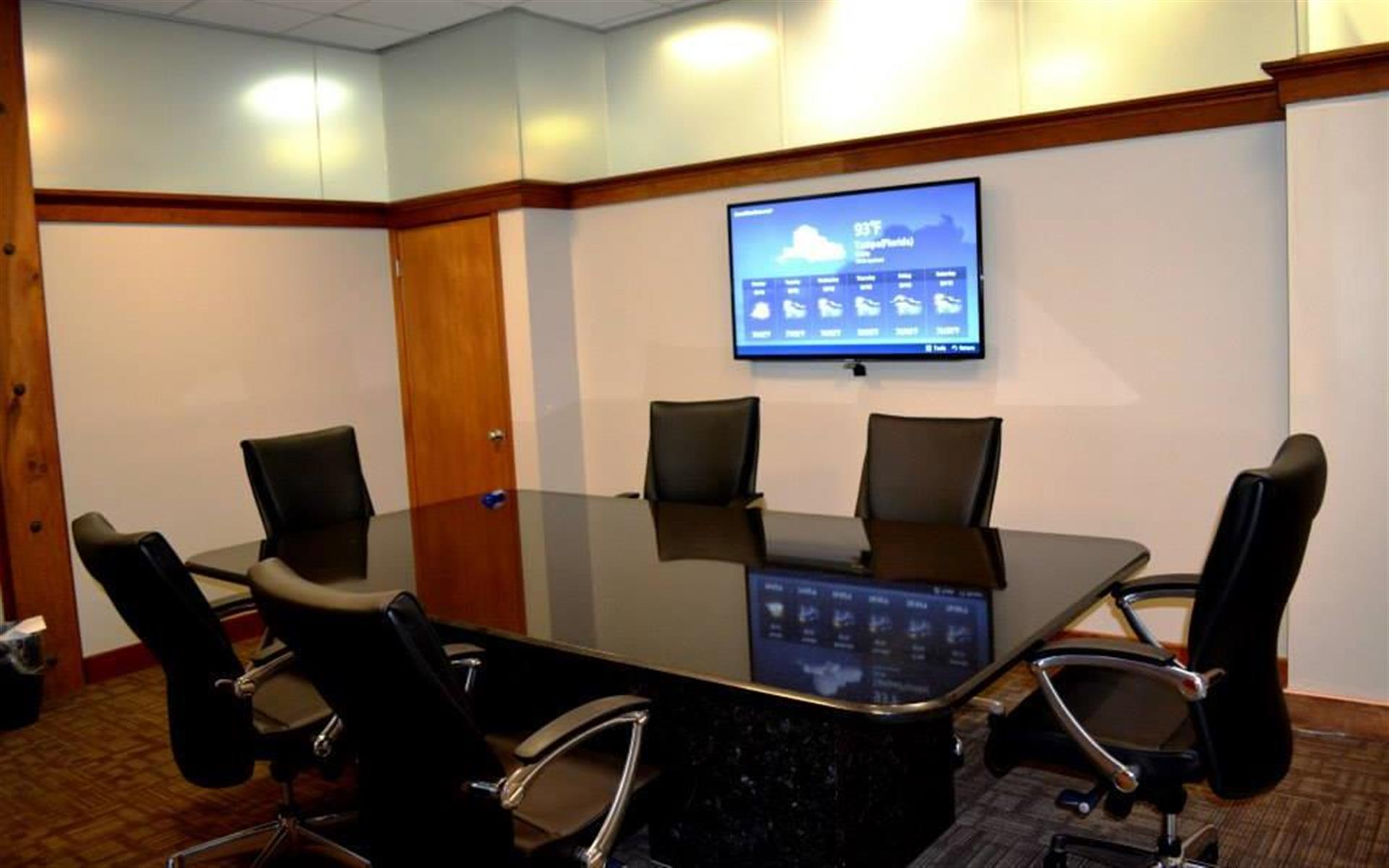Anthem Reporting - Downtown Tampa Conf Room (with Smart TV)