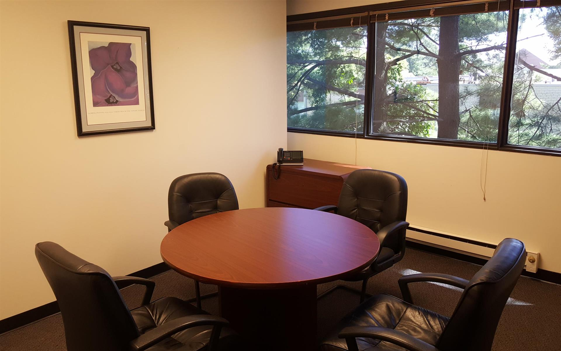 Creve Coeur Workspace - Executive Office