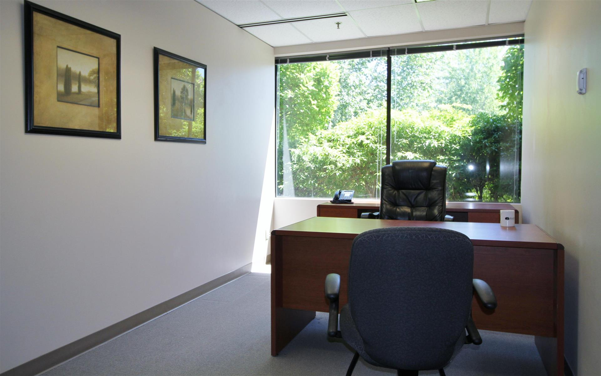 Meadow Creek Business Center - Premium Half Day Office
