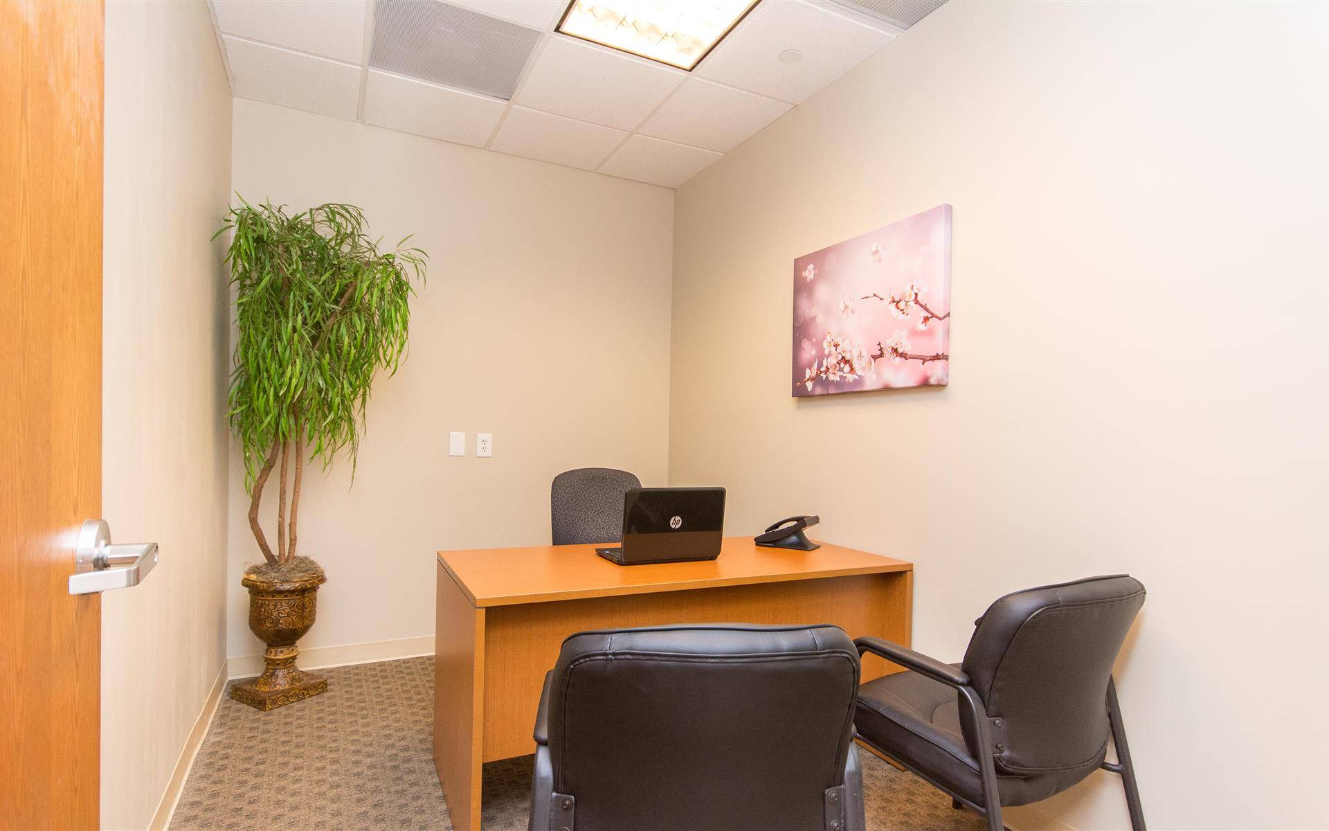 Zen in Boca Raton - Office 46