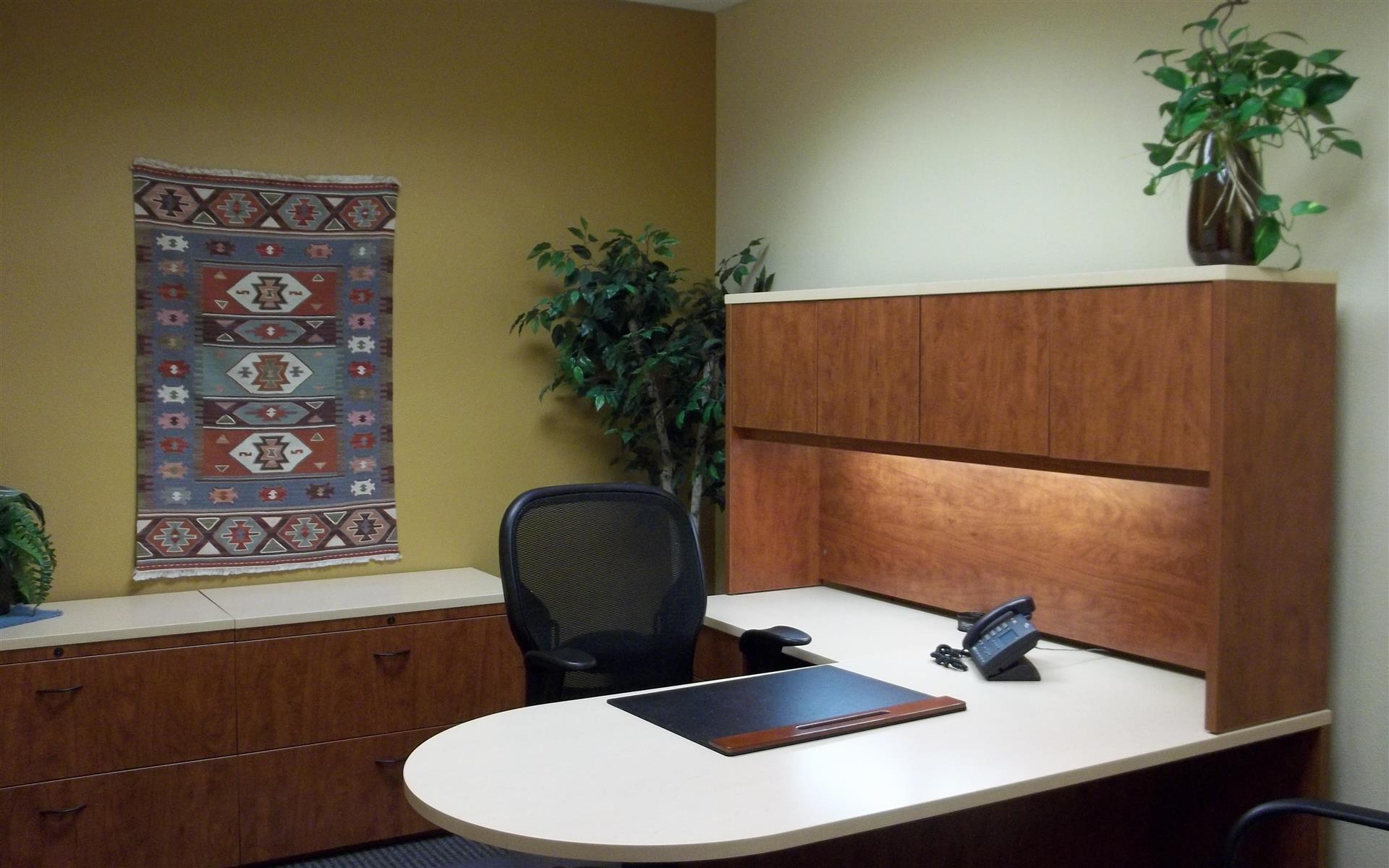 Office Alternatives - Day Office 2
