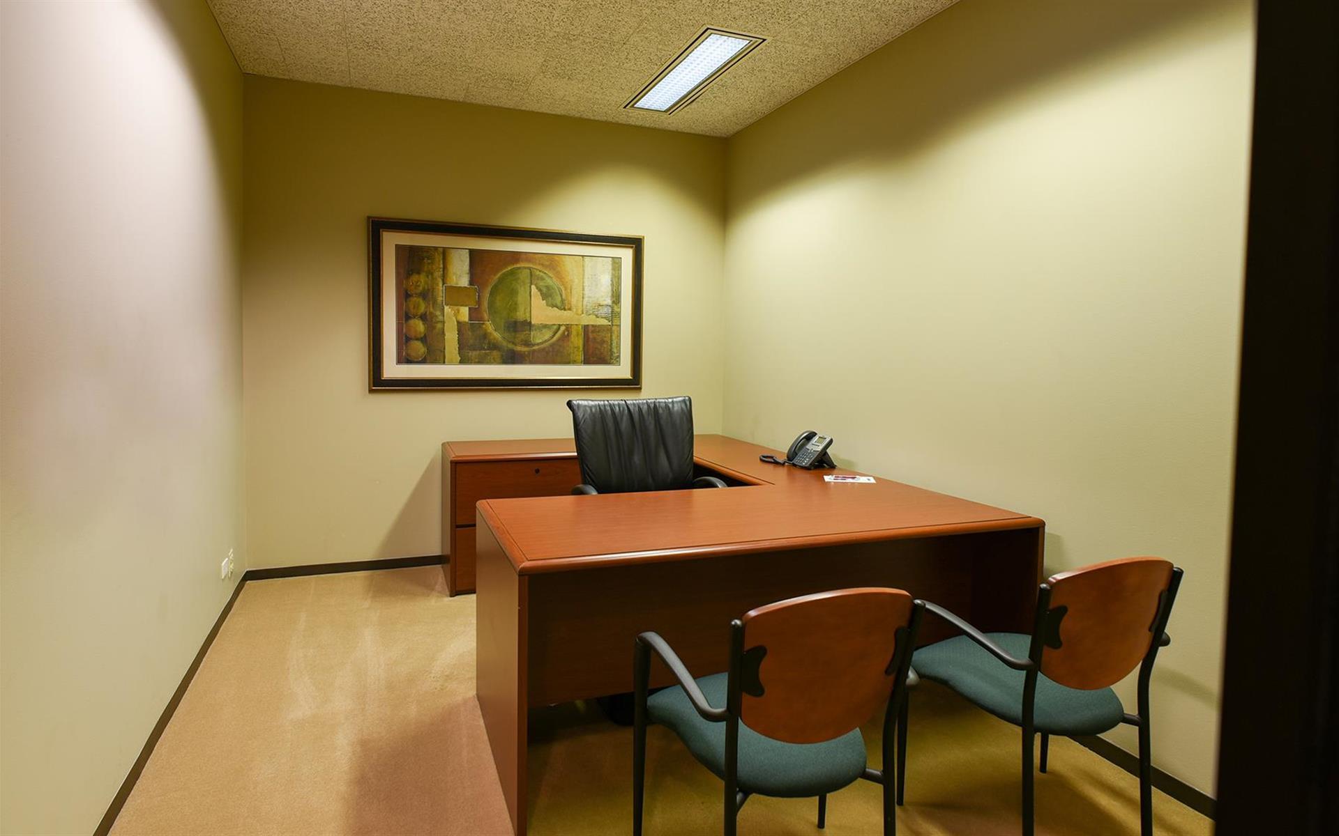 My Office Suite - Wacker Drive - Day Office 309