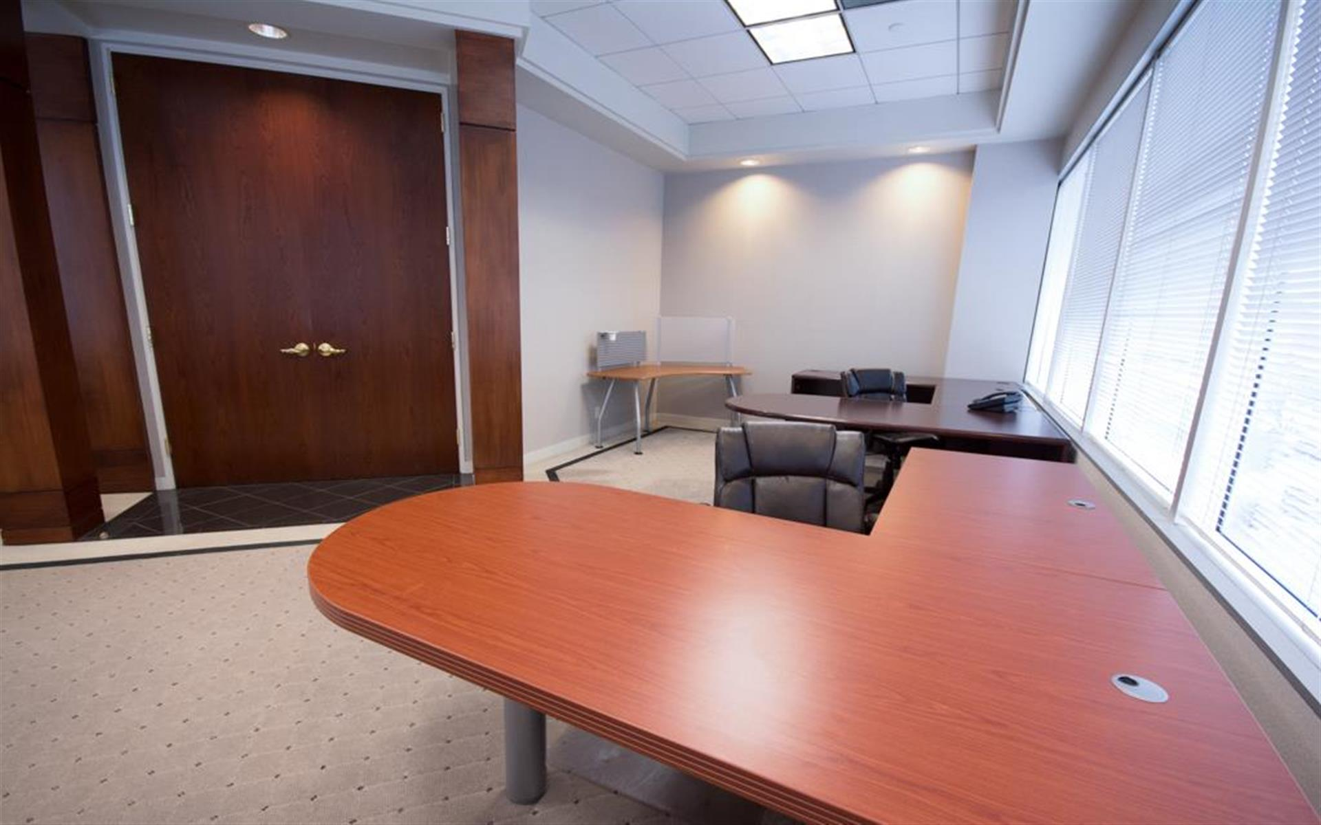 Newpark Professional Center - Monthly Large Executive Suite