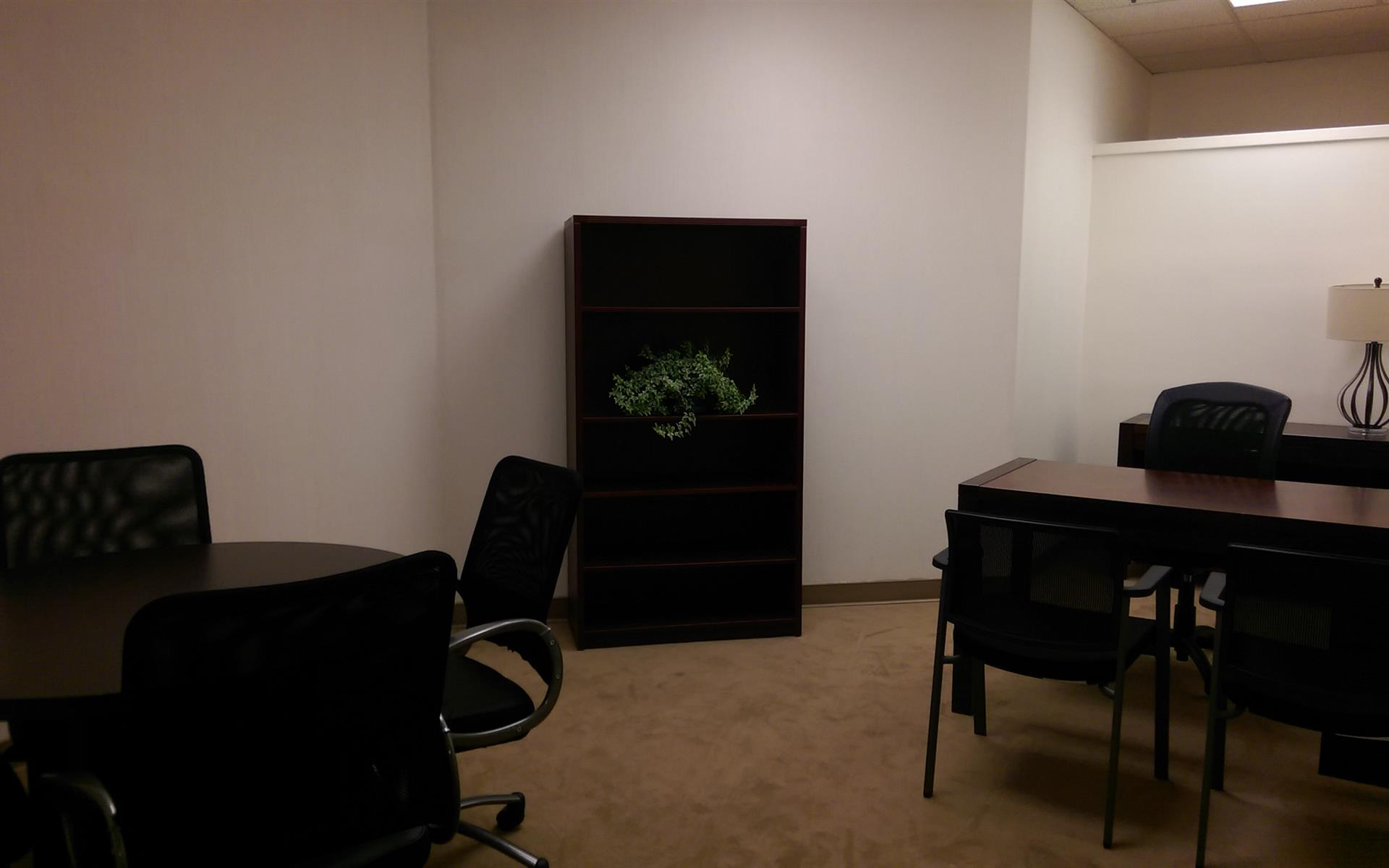 (DEN) Belcaro Place - Beautifully Furnished Interior Office