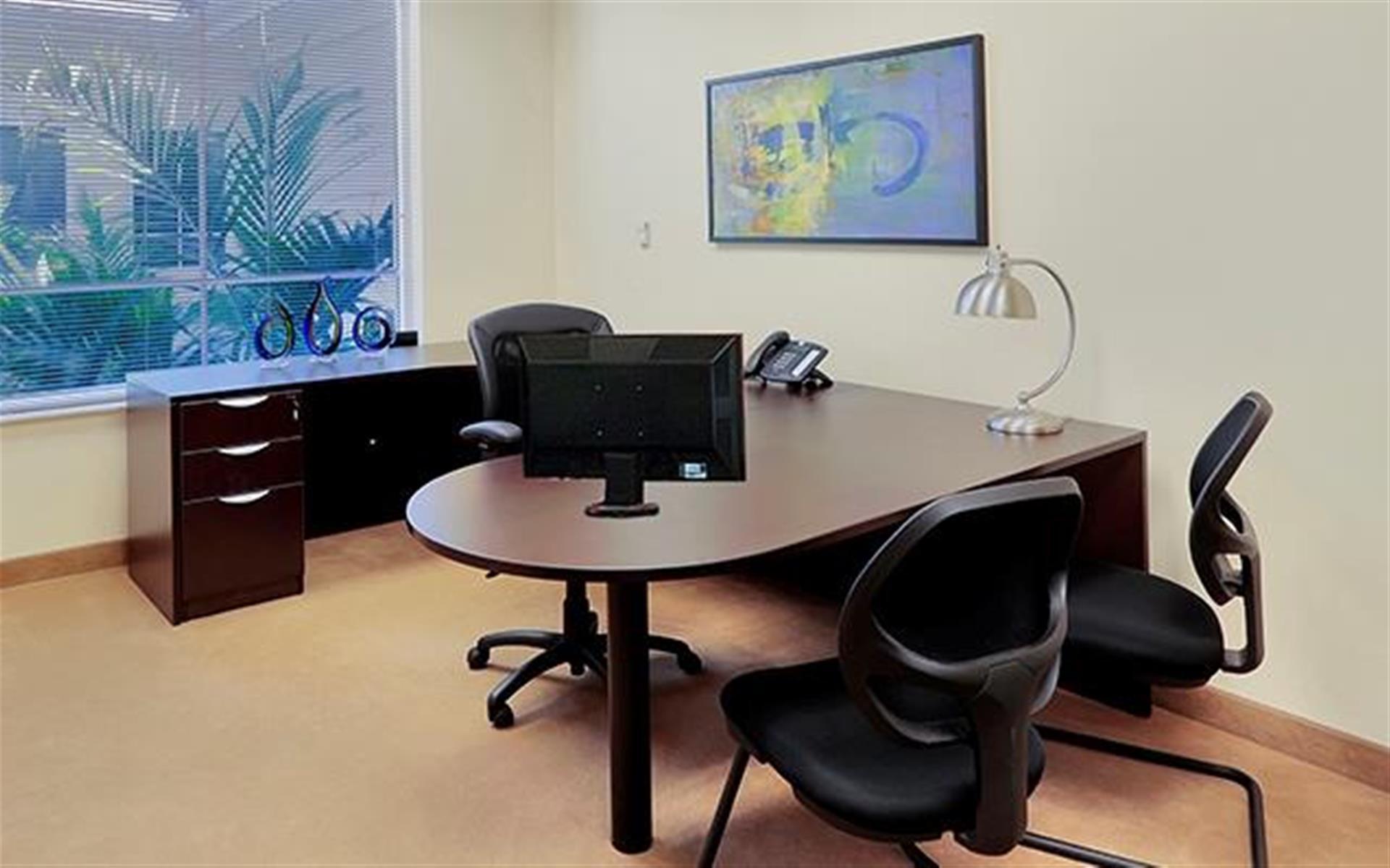 Premier Executive Center- Naples - Executive Day Office #303