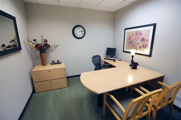1010 North Central, LLC - Private Office